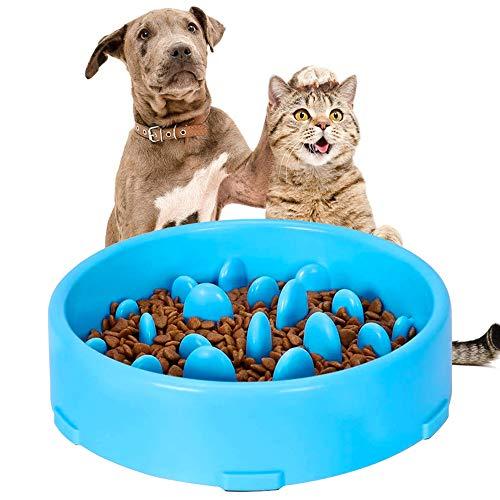 mangiare il gatto migliore guida acquisto
