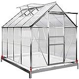 Deuba Invernadero de policarbonato Transparente con tragaluces y Base 7,6m³ Jardín huerto Cultivo de Plantas Verduras