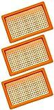 3 x Filtros de pliegue plano para aspiradora multiusos Kärcher y aspiradora en...