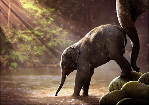 Elephant Young Watering Hole schilderij op nummer DIY uniek