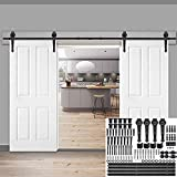 Smartxchoices 12FT Double Sliding Barn Door Track Hardware Kit Heavy Duty Steel Double Roller System Closet Cabinet Black