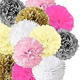 Naomo Pompones de Papel de Seda Colgantes, Pom de Papel en Forma de Flor para Cumpleaños, Boda, Bebé Ducha, Decoración Fiestas (12 Unidades - 6 Colores)