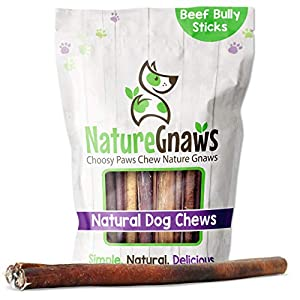 Nature Gnaws Bully Sticks for Large Dogs – Premium Natural Beef Bones – Thick Long Lasting Dog Chew Treats for Aggressive Chewers – Rawhide Free – 12 Inch (5 Count)