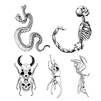 5 Unique Design Temporary Tattoos by Inktells-Updated 2020-Snake,Dinosaur,Mantis Tattoo for Men and Boys  fake tattoos for neck,back,hand and forearm   Removable  2 sheets