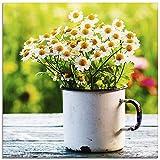 Artland Glasbilder Wandbild Glas Bild einteilig 20x20 cm Quadratisch Natur Blumen Blüten Gänseblümchen Frühling Landhaus T4UE