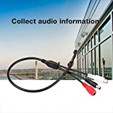 ASHATA Micrófono de Alta Sensibilidad,Accesorios de Dispositivo de Audio de Pastilla Cable de Grabación de Voz Sonido para Cámara de Seguridad CCTV,Compatible con AV/DVR/VCR/TV,etc.10-50 Metros Cuad