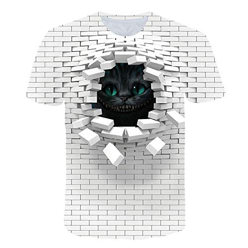T-Shirts Lochwand Pink Floyd Animal 3D Digitaldruck Loses Paar Kurzarm-A-0020, S.