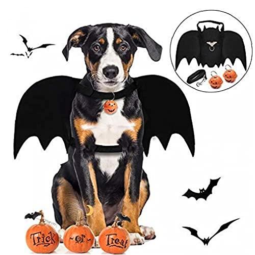 Schnuger Costume d'animal De Compagnie Halloween,...