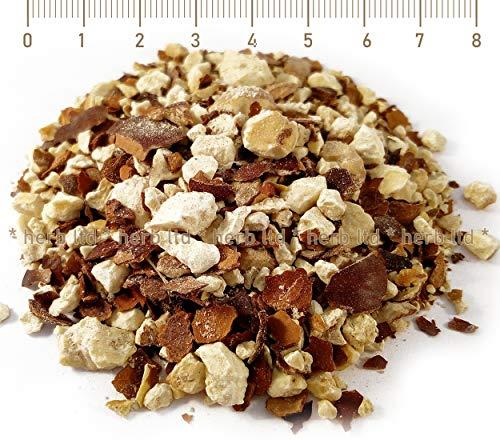 Kastanien Roßkastanien, Aesculus Hippocastanum L, Zerbrochene Früchte
