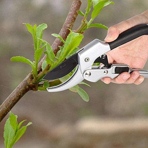 Sk-5 Acier bonsaï Greffe Cutter Gris Plante Ciseaux pour fruits Plante Sécateur Jardin Arbre Outil de découpe 20.1 cm x 6.2 cm