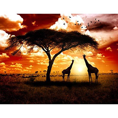 Runa Art Fototapete Afrika Giraffen Modern Vlies Wohnzimmer Schlafzimmer Flur - made in Germany - Braun Orange 9110010b