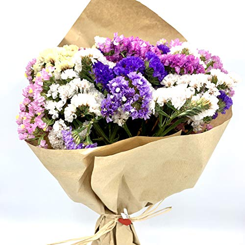 El Ático Garden. Ramo de flores secas naturales. Bouquet de flores secas decoración. Flores secas. Conjunto natural flores Statice o Siempreviva. Ramo de 40cmx20cm con pinza decoración.