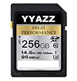 256GB SD Card High Speed Class 10 Flash Memory Cards for Action Cameras (256GB)