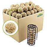 100 pcs de boulettes de mésange + jeu de contenant pour boulette | Nourriture pour oiseaux sauvages | Mangeoires & distributeur d'aliment pour oiseaux domestique accrochable boule de graisse