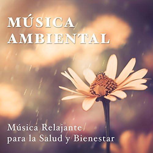 Relajacion y Guitarra Acustica & Meditación Maestro & Winter Solstice