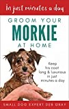 Groom Your Morkie at Home: Keep his coat long and luxurious in just minutes a day