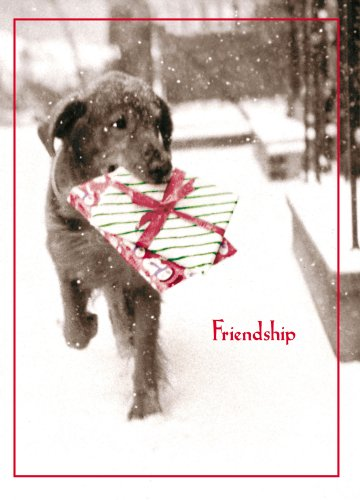 Avanti Christmas Cards, Friendship is The Best Gift of All, 10-Count