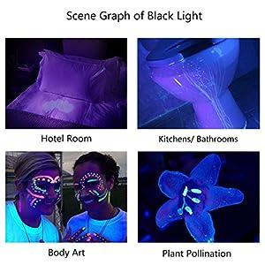 Escolite UV Flashlight Black Light, 51 LED 395 nM Ultraviolet Blacklight Detector for Dog Urine, Pet Stains and Bed Bug