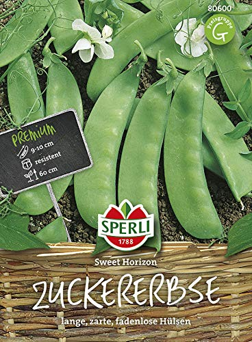 Zuckererbse Sweet Horizon | Zuckererbsensamen von Sperli-Samen