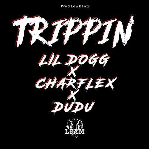 LFAM, Dudu & Charflex feat. Lil dogg