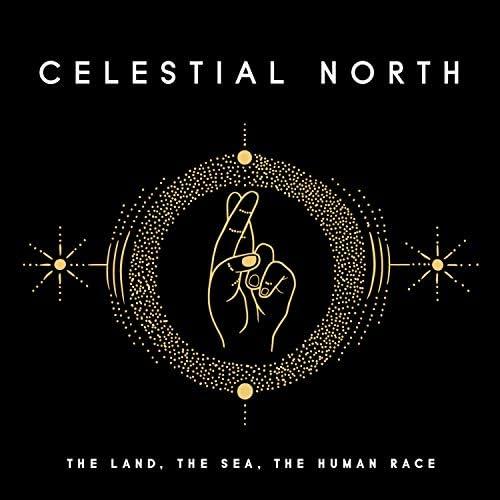 Celestial North