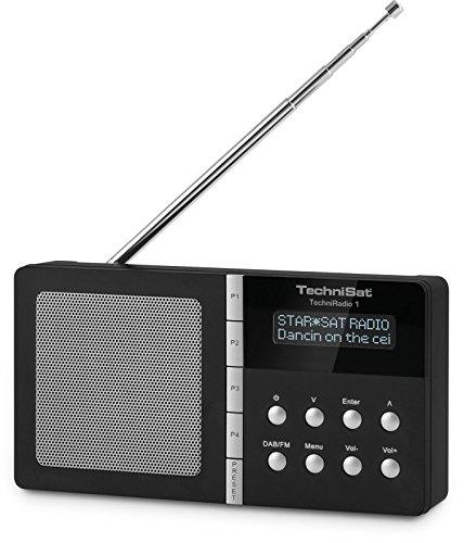 TechniSat TechniRadio 1 - Digitalradio (tragbar,...