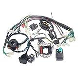 Câblage électrique CDI Stator Coil pour VTT 4 temps KLX 50cc 70cc 110cc Quad Buggy 125cc Go Kart Pit Dirt...