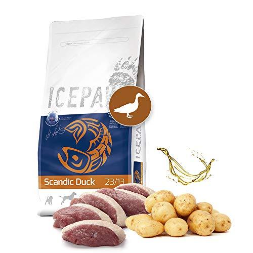 ICEPAW I High Premium Trockenfutter für Hunde I Scandic Duck 2 kg I Mit Ente und Kartoffel I getreidefrei I Adult
