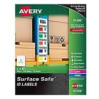 Avery Durable Labels Label 2 x 10 (61506?) [並行輸入品]