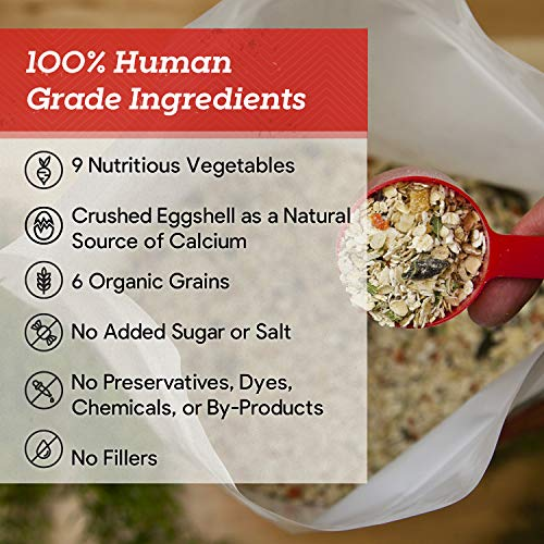 Dr. Harvey's Canine Health Miracle Dog Food, Human Grade Dehydrated Base Mix for Dogs with Organic Whole Grains and Vegetables (10 Pounds)