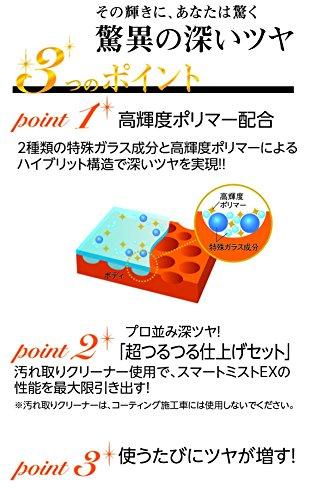 CCI(シーシーアイ)『スマートミストEXクリーナーセット(W-167)』