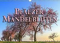 Pfaelzer Mandelblueten (Wandkalender 2022 DIN A3 quer): Ein Spaziergang in Bildern durch die Pfalz im Mandelbluetenkleid (Monatskalender, 14 Seiten )