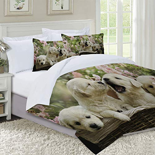IU POP-Street Duvet Cover Set-Bedding,Red Puppy Little Golden Retriever Puppies In Basket Summer Pink Rose Garden Yellow,Quilt Cover Bedlinen-Microfibre 140x200cm with 2 Pillowcase 50x80cm
