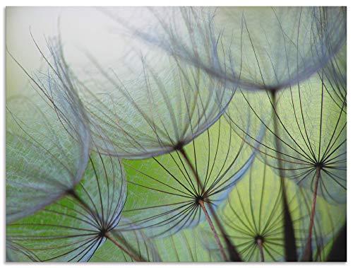 Artland Wandbild Alu für Innen & Outdoor Metall Bild 40x30 cm Pusteblumen Natur Botanik Blumen Modern Kunst Abstrakt T5PP