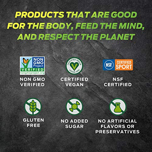 Vega Sport Premium Protein Powder, Berry, Plant Based Protein Powder for Post Workout - Certified Vegan, Vegetarian, Keto-Friendly, Gluten Free, Dairy Free, BCAA Amino Acid (19 Servings / 1lb 12oz)