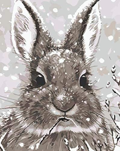 Hanzeze DIY pintura al óleo de lienzo Conejo gris Adecuado para adultos, niños y principiantes, use pinceles y pinturas para pintar con bricolaje por número.40 x 50 cm Sin Marco