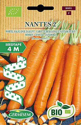 Germisem Orgánica Nantes 2 Semillas de Zanahoria en Cinta de 4 m