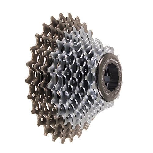 "Vidrio laminado para bogenbau 1850mm x 50mm x 1mm Bow making Material 73/"" x 2/"""