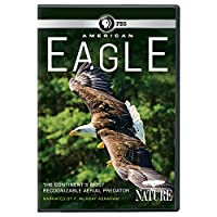 Nature: American Eagle [DVD] [Import]