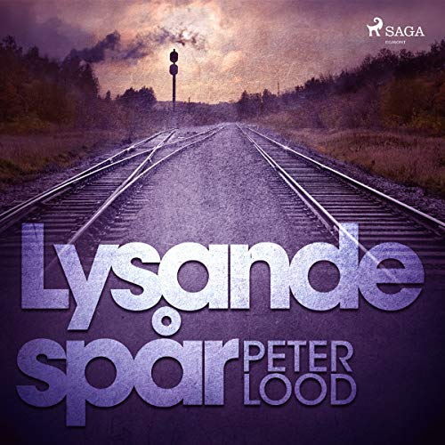 Lysande spår audiobook cover art