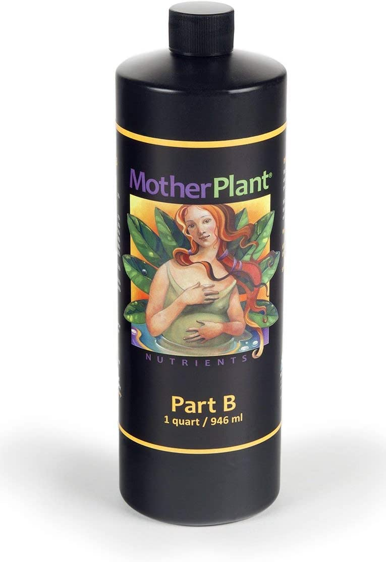 HydroDynamics Mother Plant Price reduction low-pricing B 1 Quart