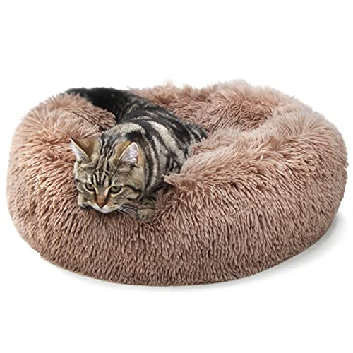 nononfish Girl Dog Beds for Small Dogs Puppy Kitten Cats Fluffy Orthopedic Relief Anti Anxiety with Fuzzy Blanket Attached