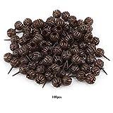 Scatola di fertilizzante per bonsai Ichiias, 100 pz/set cestello per fertilizzante portati...