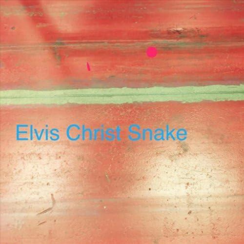 Elvis Christ Snake