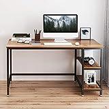 Yoleo Schreibtisch Computertisch Bürotisch 120 x 60 x 75CM Gaming Tisch Home Office Workstation Industriestil aus Metall und Holz 2 Regalfächer