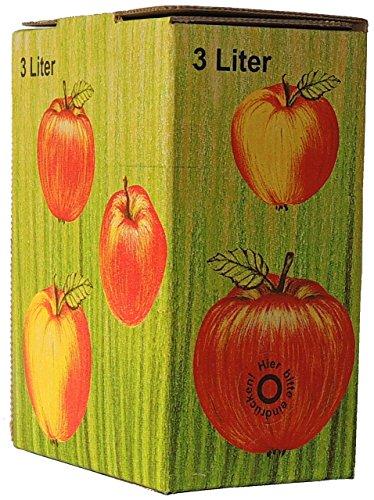 10 Stück 3 Liter Bag in Box Karton in Apfeldekor