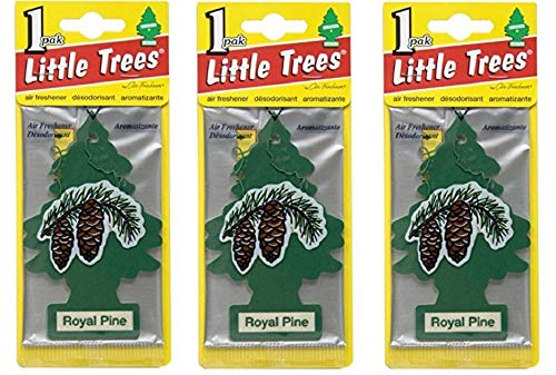 LITTLE TREES Car Air Freshener | Hanging Paper Tree for Home or Car | Royal Pine | 3 Pack