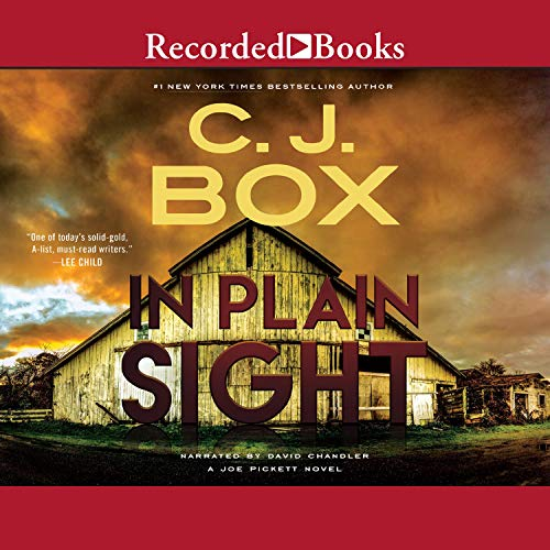 In Plain Sight audiobook cover art
