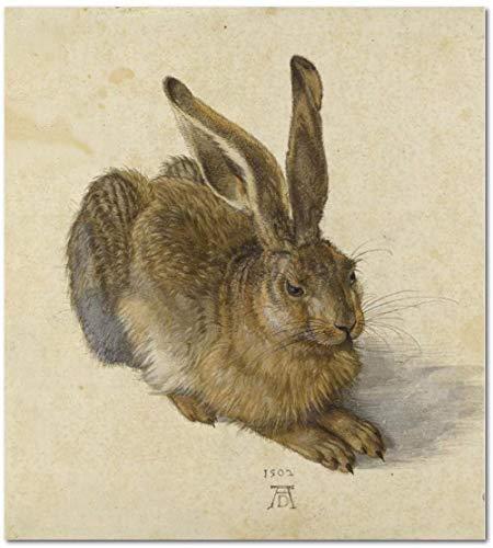 Zahlen für Erwachsene Kinder - Albrecht Dürer Junger Hase - DIY digitale Malerei von Zahlensätzen auf Leinwand-40x50cm mit Rahmen