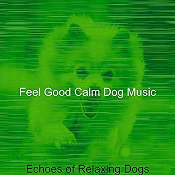 Echoes of Relaxing Dogs